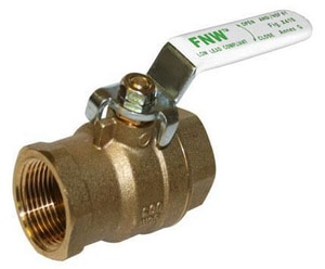 FNW 600 WOG 2-Piece Brass Threaded Full Port Ball Valve FNWX410C