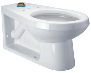 Zurn Industries 1.1 gpf Elongated Two Piece Toilet ZZ5635BWL