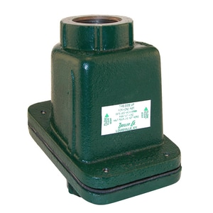 Zoeller 1-1/4 in. FPT Cast Iron Check Valve Z300163