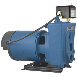 Flint & Walling Convertible Jet Pump FCPJ0B