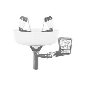 Encon Safety Products Wall Mount Facewash with Stainless Steel Bowl E01045501