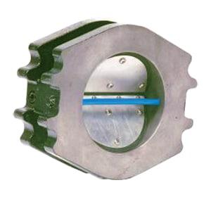 Flexi Hinge Valve Company Flanged Cast Iron Blower Check Valve F5184330