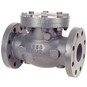 Nibco 250 psi Cast Iron Flanged Check Valve NF968B