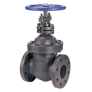 Nibco 250# Cast Iron Flanged Non-Rising Stem Gate Valve NF669P