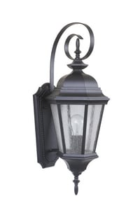 Craftmade International Chadwick 24-3/10 in. 100W 1-Light Medium E-26 Base Outdoor Wall Sconce CZ2914