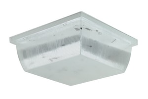 Liteco 13W 2-Light Outdoor Ceiling Fixture with Glass in White LFS323M213WCL