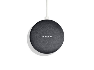 Nest Labs Google Home Mini Speaker NWNGOGA2US