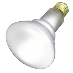 Satco 130V Incandescent Lamp Bulb in Frosted SS3408