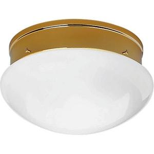 Progress Lighting 60W 2-Light Medium Base Fitter Close-to-Ceiling Light PP3410