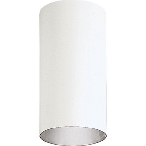 Progress Lighting Cylinder 12 x 6 in. 150W 1-Light Outdoor Wall Lantern PP5741