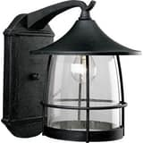 Progress Lighting Prairie 10 in. 100W 1-Light Medium Wall Lantern PP5764