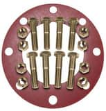 FNW® 12 x 1/8 in. 150# 316 Stainless Steel Red Rubber Full Face Flange Package FNWNBGS61RF812