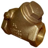 FNW 1 in. Bronze NPT Check Valve FNW1241G at Pollardwater