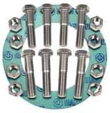 FNW® 10 in. 150# Zinc Non-Asbestos 1/16 Ring Gasket Nut, Bolt, Gasket Set FNWNBGZ1NAR610