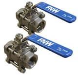 FNW® 2 in. Stainless Steel Valve Repair Kit FNW310ARKK