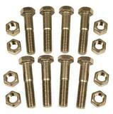 FNW® 10 in. 316 Stainless Steel Flange Nut and Bolt Set FNWNBSS6110