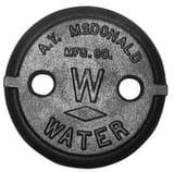 A.Y. McDonald 2 in. 2-Hole Pattern Lid M5601L