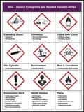 Accuform Signs 24 x 18 in. GHS Pictogram Poster APST153 at Pollardwater